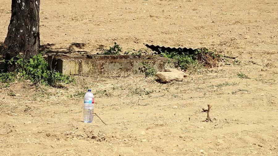 Poço onde Maria de Fátima afogou e matou o filho Eduardo, de 17 anos