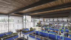 Um projeto para um futuro melhor em Viana do Castelo