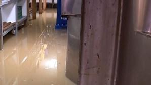Câmara de Cascais avança com fundo de apoio de 100 mil euros para comerciantes e particulares afetados