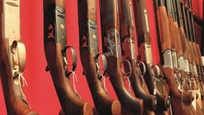 Há cerca de 1,5 milhões de armas legais em Portugal