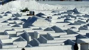 Maior labirinto de neve do mundo cresce em tempos de pandemia