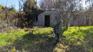 PSP destrói granada encontrada em quinta de Viseu