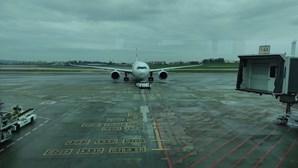 Avião da TAP que vai realizar voo humanitário do Brasil para Portugal chegou a São Paulo