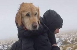 Casal salva cadela perdida em montanha e acaba denunciado à polícia por violar confinamento
