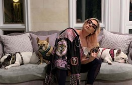 Lady Gaga com os seus cães