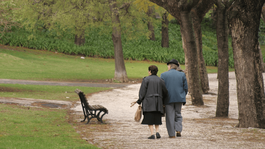 Santa Casa quer explorar novos modelos para um envelhecimento ativo, integrado na comunidade e saudável