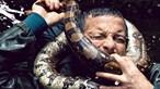 Estrela da televisão britânica quase morre asfixiada por cobra com mais de dois metros
