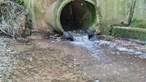 Águas de Gondomar nega descarga de esgoto não tratado no rio Douro