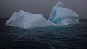 Aquecimento global põe em risco um terço da plataforma de gelo da Antártida