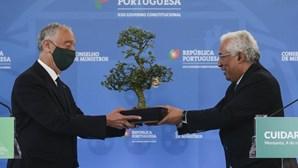 """""""Não combater apenas os incêndios mas prevenir"""": Marcelo Rebelo de Sousa após conselho de ministros sobre as florestas"""