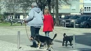 António Costa aproveita manhã de sábado para passeio higiénico com a mulher e os cães