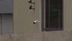 Família faz buracos e arromba portas em assaltos a armazéns no Grande Porto