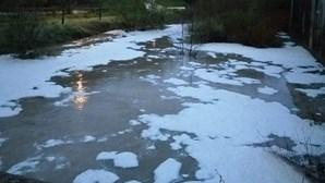 """Ambientalistas denunciam """"vil ataque com poluição química"""" no rio Alviela"""