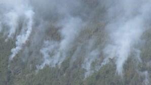 Mais de 140 operacionais e quatro meios aéreos combatem incêndio em Seia