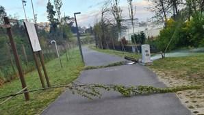 Passadiços do Rio Tinto vandalizados durante a madrugada