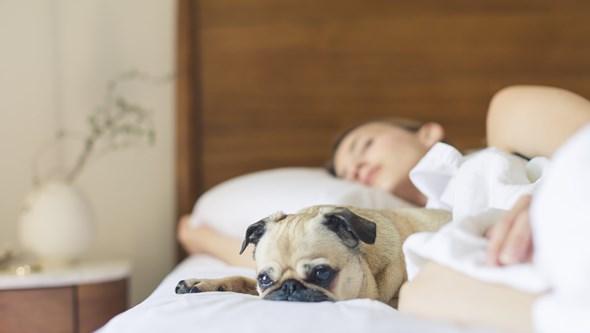 13 sugestões de um especialista para dormir melhor