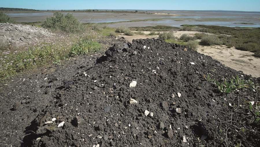 Resíduos colocados na zona da Mitrena deverão ser de material utilizado antigamente na construção civil