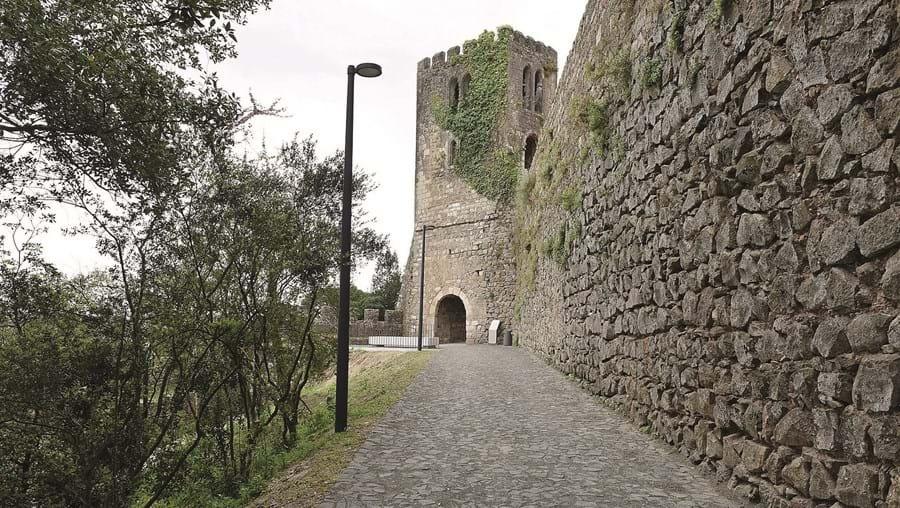 Castelo de Leiria esteve três anos em obras de remodelação total e reabre portas com muitas novidades