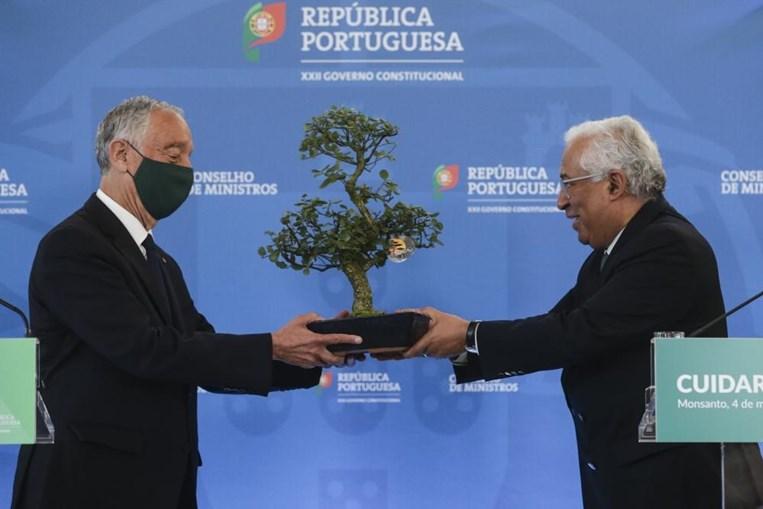 Costa dá bonsai a Marcelo
