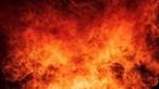 Autoridades moçambicanas queimaram mais de 700 quilos de droga