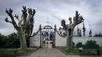 Morgue do Hospital de Viseu troca corpos e avisa funerária a horas do funeral