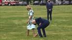 Joe Biden, o romântico, apanhauma flor do relvado para oferecer à mulher