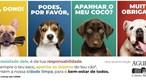 Águeda inaugura parque canino da Várzea
