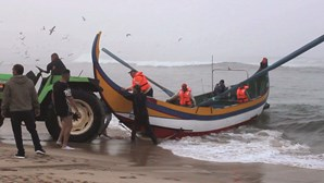 Pescadores da região Norte suspendem paragem e regressam à atividade