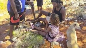 Cão leal protege menina surda e autista de quatro anos que se perdeu no deserto