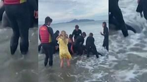 Antiga estrela do rugby ajuda a libertar baleia encalhada na Nova Zelândia