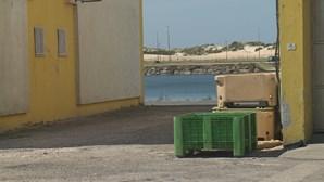 Três detidos por captura ilegal de meixão em operação internacional