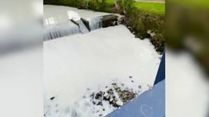 Rio fica coberto de branco após acidente com camião de transporte de leite