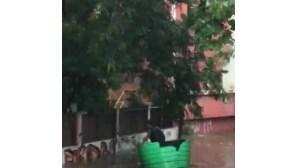 Várias zonas de Luanda inundadas após chuva intensa