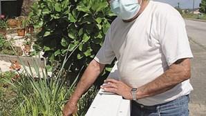 Homem mordido por víbora cornuda em Constância recupera no hospital