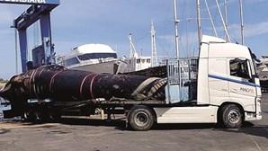 Recolhida baleia morta que encalhou em Vila Real de Santo António