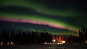 Auroras boreais pintam céu do Alasca de rosa e verde