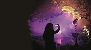 Jogos de luz e hologramas