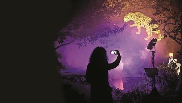 Jogos de luz e hologramas animam Lisboa e Porto