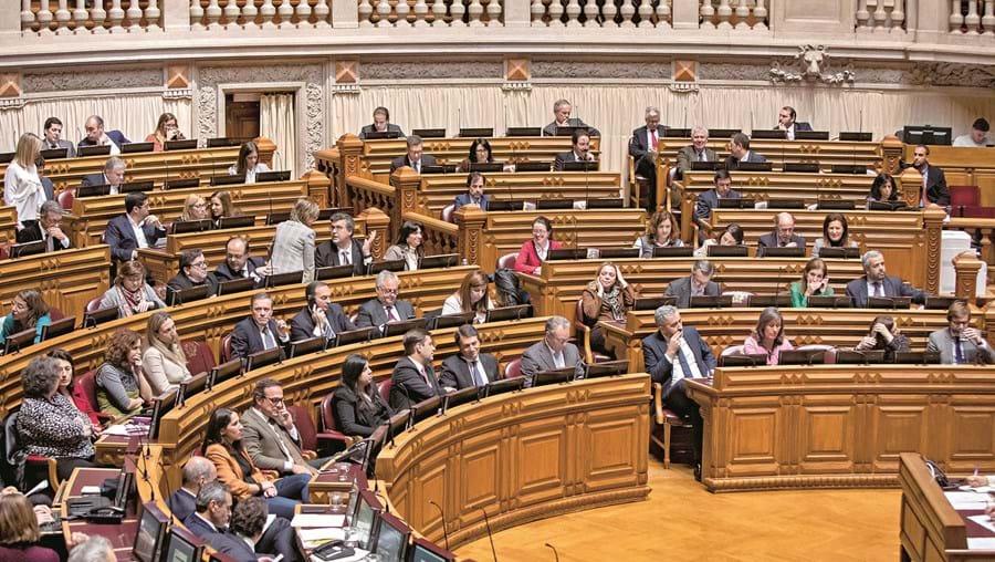 Assembleia da República deverá viabilizar os projetos de lei de PSD, CDS e PAN. O objetivo depois é transformar as iniciativas num texto comum