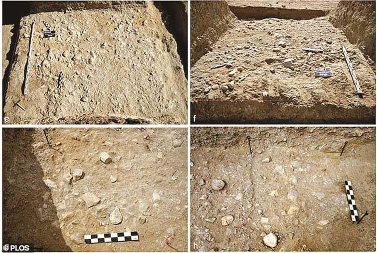Local teria sido uma antiga oficina do período do homo erectus