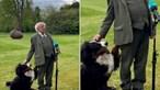 Cão interrompe entrevista para pedir atenção do presidente irlandês
