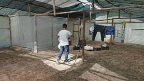 Migrantes vivem em condições precárias e sem higiene em Odemira