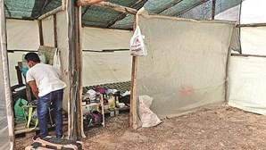 Seis mil trabalhadores vivem sem condições em Odemira