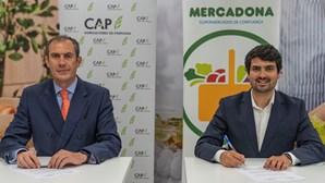 Mercadona e CAP assinam protocolo de colaboração