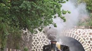 Comboio histórico apitou no Vouga