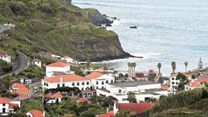Autarca pede apuramento de responsabilidades em queda de galho no Funchal