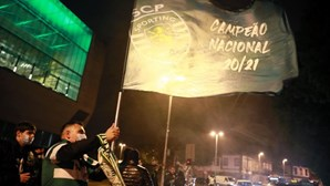 'Onda verde' portuense entre a Avenida dos Aliados e Boavista no Porto