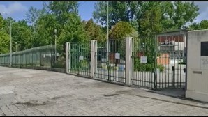 Encarregada de Educação agredida à entrada de escola em Vila Nova de Gaia