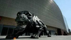 DGS impede instalação de ecrã gigante no exterior do Estádio do Bessa