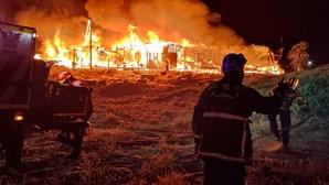 Incêndio suspeito deixa bar na Costa de Caparica em cinzas